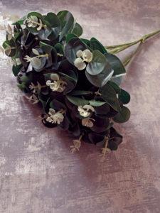 Eucalyptus Bunch 1